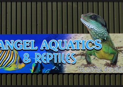 Printed vinyl applied to shape cut panel for Angel Aquatics and Reptiles for commercial premises